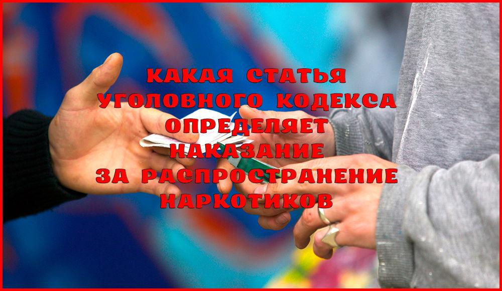Статья за распространение наркотиков в законодательстве России